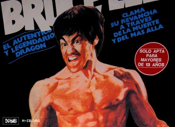 Bruce Lee Foundation x Nike SB V-Rod