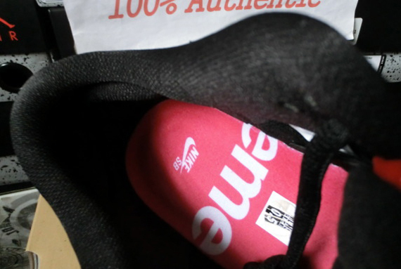 Dunk Low Chaqueta Roja Suprema Nike Sb xW8xp0Xoj
