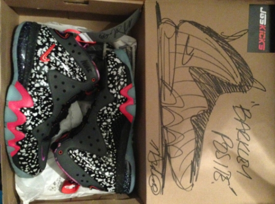 """Nike Barkley Posite Max """"Area 72"""" with Marc Dolce Autographed & Illustrated Box"""