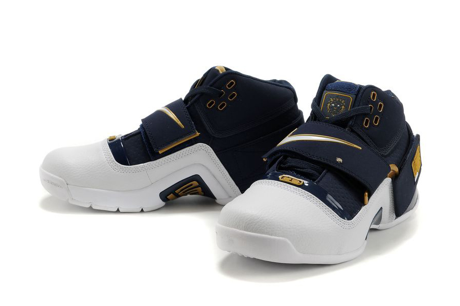 Lebron James 2007 Shoes