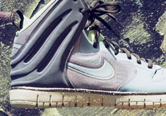 "Nike Dunk Free ""Arago"""