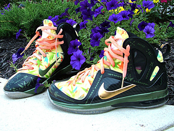 Nike LeBron 9 Elite quot2x Champquot Customs by Nate Dockery free shipping fa4ced428