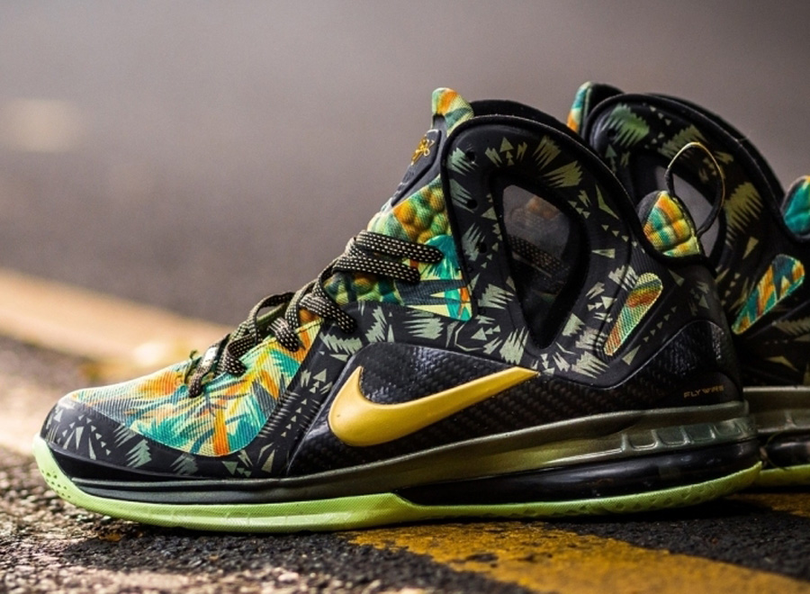 "Nike LeBron 9 Elite ""2 Times Champ"" by District Customs"