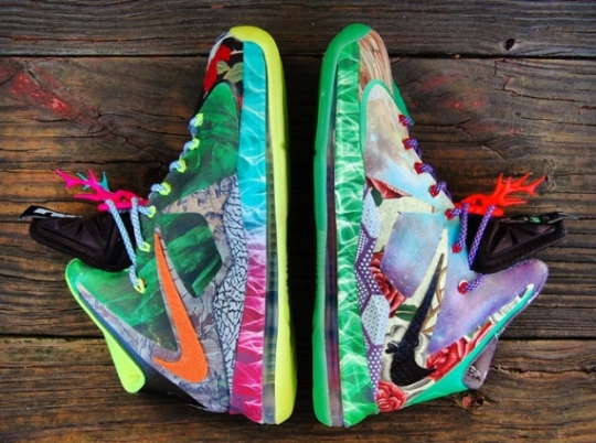 "Nike LeBron X ""What the Fehc"" Customs by Gourmet Kickz"