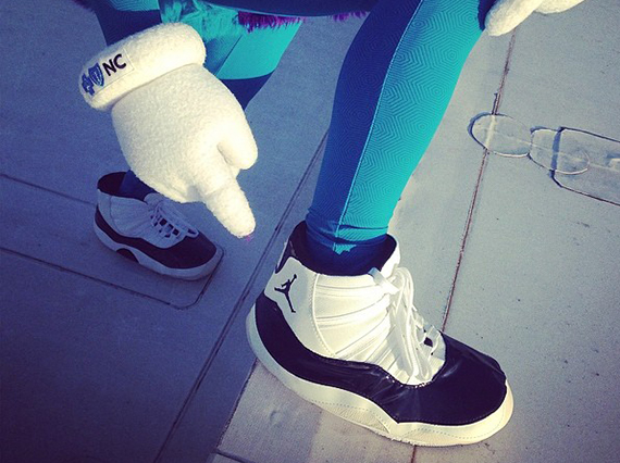 Charlotte Hornets Mascot Hugo Creates A Buzz With Concord 11s