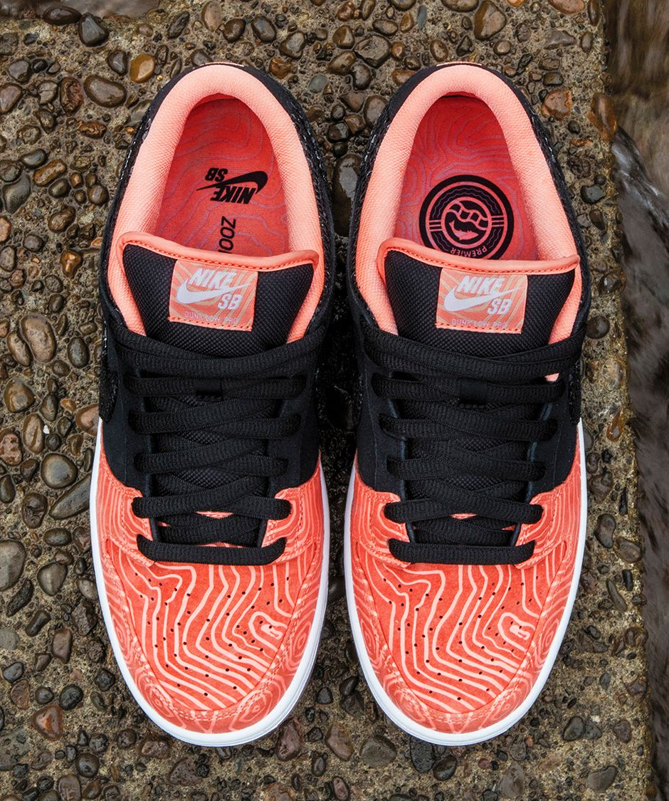 Premier Skate's Nike SB