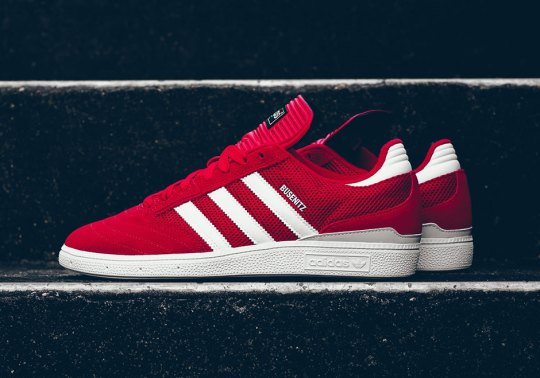 The adidas Busenitz In Mesh Form