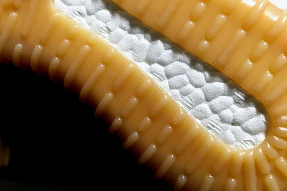 Adidas Yeezy Impulso 750 De Las Encías Ebay tWHGRKZJQ