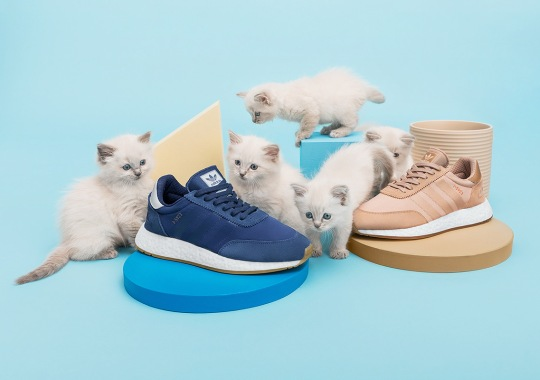 These Kittens Don't Come With Sneakernstuff's Next adidas Collaboration