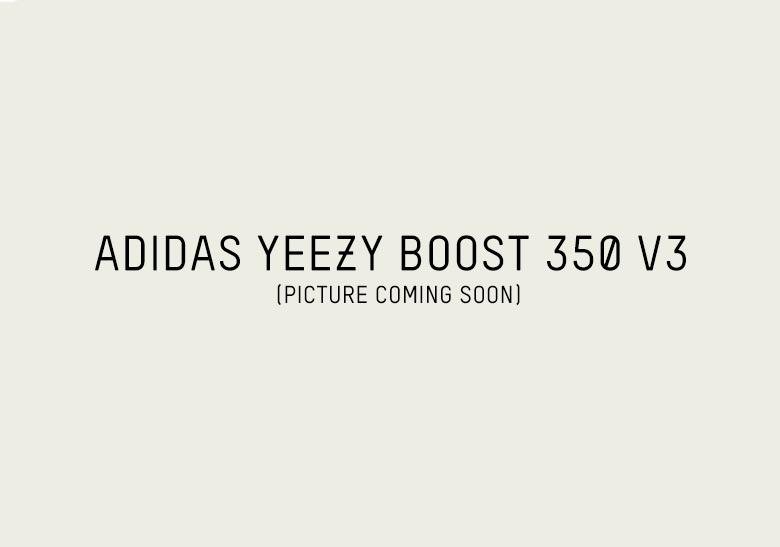 5dfba6d4a176d adidas Yeezy Boost 350 v3. Release Date  Summer 2019