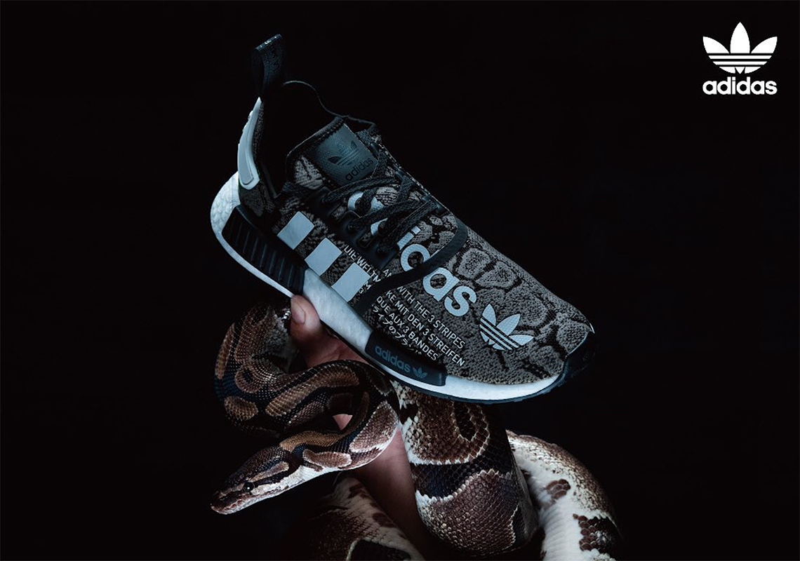 Adidas News, Articles, Stories & Trends for Today