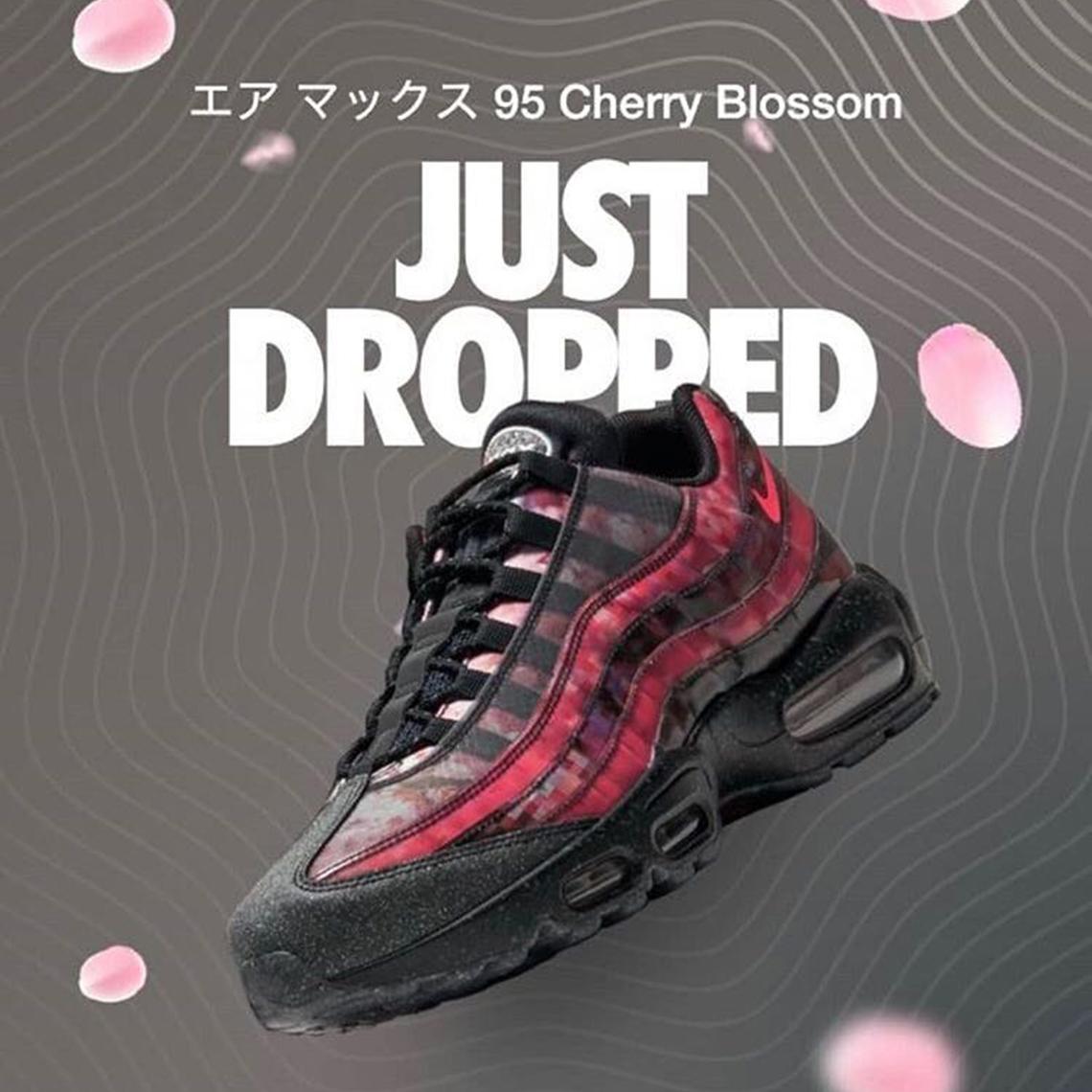 Nike Air Max 95 Cherry Blossom CU6723 076 |