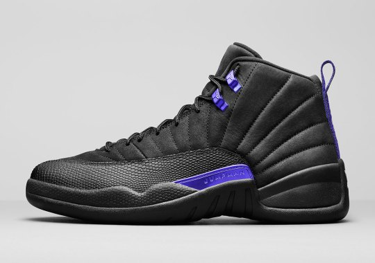 """Official Images Of The Air Jordan 12 Retro """"Concord"""""""