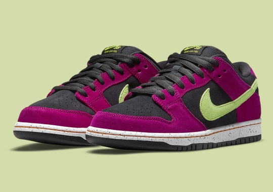 A Third ACG Terra Inspired Nike SB Dunk Low Appears
